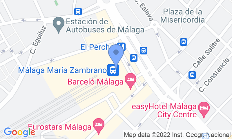 Parking location in the map - Book a parking spot in Pedrocar Cubierto VIP - Estacion AVE Malaga - Maria Zambrano car park