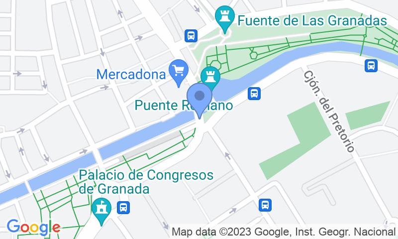 Localització del parking al mapa - Parking Ciudad de Granada - Violón
